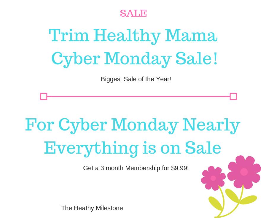 THM Cyber Monday Sale